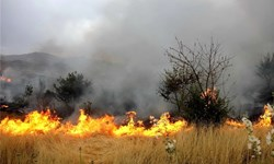 اطلاعیه مدیریت بحران اردبیل جهت پیشگیری از آتشسوزی جنگلها و مراتع
