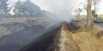 مهار آتشسوزی در خسرج / مهار کامل حریق در خائیز تا ساعات آینده