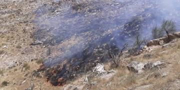 مهار آتش سوزی در پناهگاه حیات وحش شیرکوه