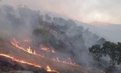 ۷ هکتار از باغات و مزارع روستای چراغان راسک طعمه حریق شد