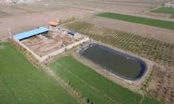 ممنوعیت احداث استخر کشاورزی بدون مجوز در آذربایجانغربی