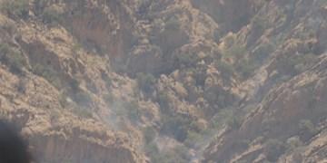 مهار کامل آتشسوزی ارتفاعات ماهور باشت
