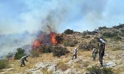 حریق کوههای هَرم  جویم مهار شد/ بررسی دلیل وقوع آتش سوزی