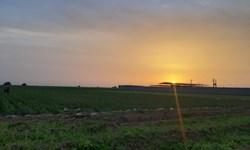 کشاورزان شهرستان گتوند را دریابید