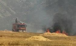 10 هکتاراز مزارع گندم پلدختر طعمه حریق شد