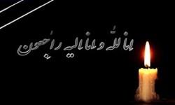 تسلیت جمعی از علمای فارس در پی درگذشت آیتالله محجوبجهرمی
