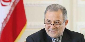 سفیر ایران خواستار رفع محدودیت ورود کالاهای ایرانی به گرجستان شد