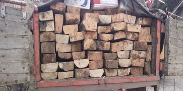 توقیف محموله چوب قاچاق در بندرلنگه