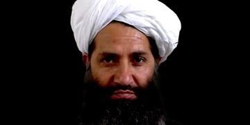 طالبان درباره پیامد نقض توافقنامه دوحه به آمریکا هشدار داد