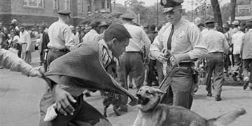 پانصد سال نژادپرستی آمریکایی؛ از واردات برده تا قیام مینیاپولیس