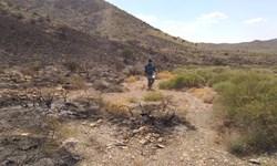 وقوع سه فقره آتشسوزی طی یک روز در مراتع سیرجان