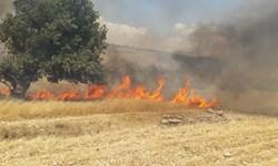 آتش سوزی مزارع در روستای «میدان بزرگ» پلدختر