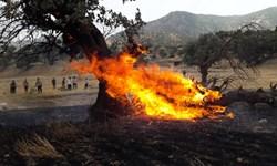 اکیپی از آتش نشانان تهرانی عازم یاسوج شدند