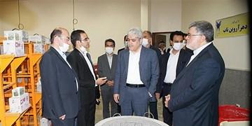 بازدید معاون علمی و فناوری ریاست جمهوری از مرکز رشد واحدهای فناور دانشگاه آزاد خراسان جنوبی