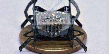 کوچکترین و سریعترین ربات جهان ساخته شد