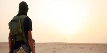فعالیت مجموعههای کوچک داعش برای ناامن کردن مناطق غربی استان الانبار عراق