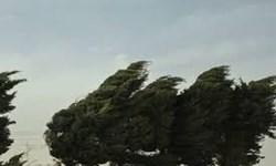 پیشبینی آسمان ابری و وزش باد تند طی دو روز پایانی هفته در اردبیل