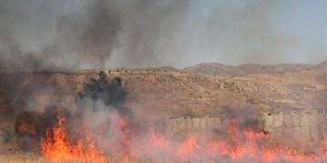 آتش سوزیهای گسترده در شهرستان گتوند