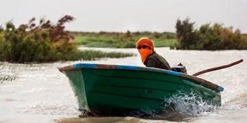 رقص قایقهای به گلِ نشسته در رودخانههای سیستان + فیلم و عکس