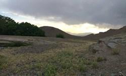 پیشرفت زمینخوارها به مرحله موقوفهخواری/ بیشه بالای گلشهر با سند تک برگ تصرف شد