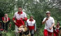 اعزام 4 تیم برای پیدا کردن خانم مفقود شده در جنگلهای کیاسر