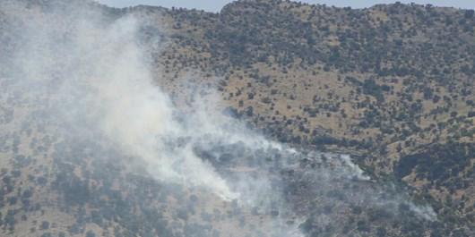 آتشسوزی جنگلها و مراتع «لوداب» بویراحمد کنترل شد