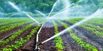 اعلام شاخص ترین سیاست های تشویقی توسط دولت به کشاورزان/  بزرگ ترین چالش بخش کشاورزی