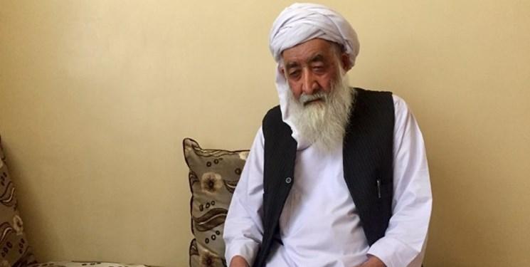 «مولانا شفیقى هروى» شاعر و ادیب افغانستانی درگذشت