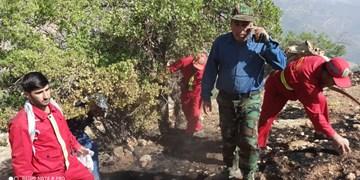 اطفای آتشسوزی جنگل بر فراز یاسوج با فرماندهی مدیرکل منابع طبیعی+ تصویر