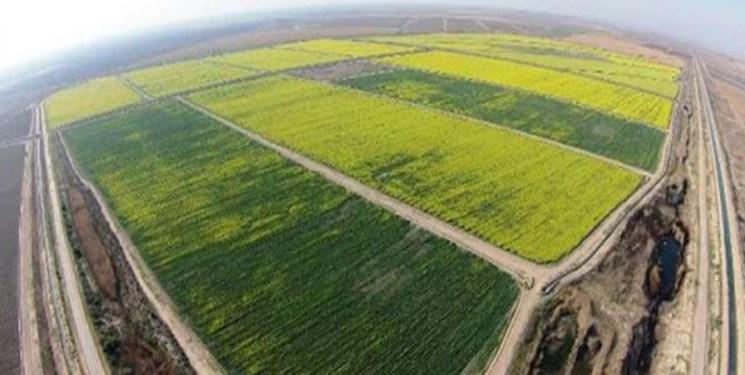 تأمین آب فاز نخست طرح 550 هزار هکتاری بهصورت کامل انجام نمیشود