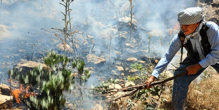 ۶ هکتار از جنگلهای پلدختر در آتش سوخت