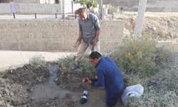 نمونهای از تلاش یک مدیر جهادی در چاروسا+تصویر