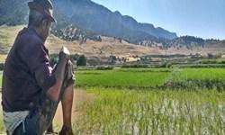 نگرفتن سهم طبیعی حقآبه لرستان به معیشت کشاورزان آسیب زده است