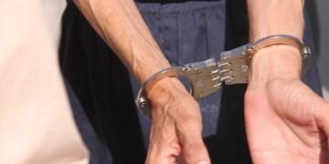دستگیری عامل شرارت به کشاورزان دشتیاری