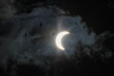 آخرین خورشید گرفتگی قرن در «کرمان»