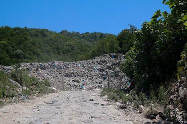 ;کوه زباله در جنگل