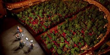 اجرای «گلهای ۲۲۹۲» در اسپانیا/ کنسرتی برای گل ها