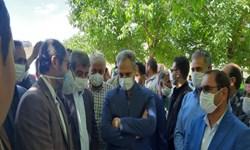 بازدید وزیر جهاد کشاورزی از باغات گردوی رابر