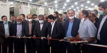 سرپرست وزارت صمت از یک واحد تولیدی در قزوین بازدید کرد