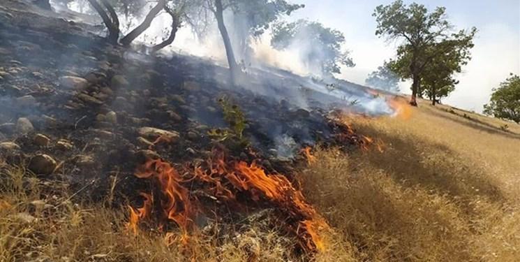کوه شب در مرز هرمزگان و فارس در آتش میسوزد