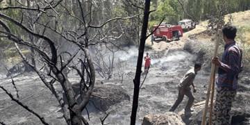 آتشسوزی در باغهای شاهرود+ تصاویر