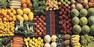 صادرات ۴ هزار کانتینر میوه و صیفی جات استان البرز