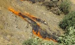 آتش 500 هکتار از مراتع پاوه را به کام خود فرو برد