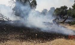 وقوع آتش سوزی در منطقه ششدار ایلام