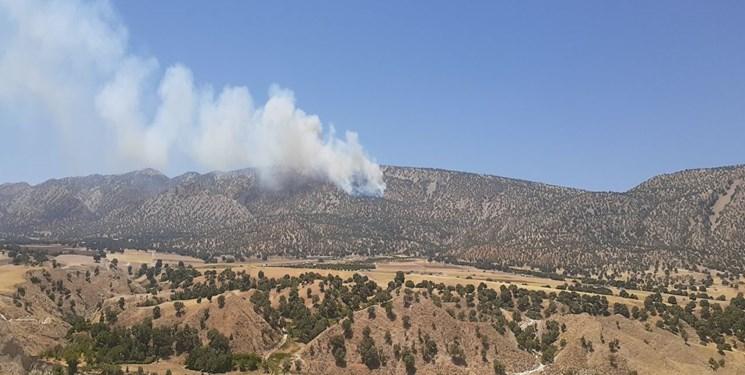 آتشسوزی جنگلها در سفیدکوه خرمآباد