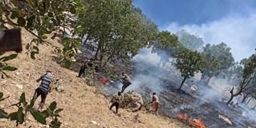 وقوع آتشسوزی در مراتع روستای «چالچوق» ابهر