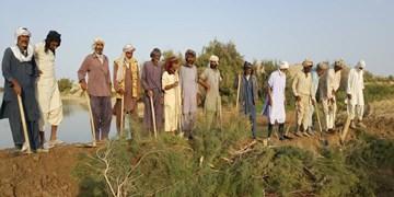 تلاش کشاورزان «کیخا» برای احداث بند خاکی و جای خالی مسئولان + فیلم