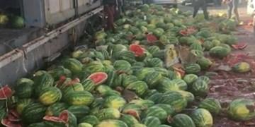صادرات آب مجازی به ترکیه!/ هندوانههایی که روی دست تجار ماند+فیلم