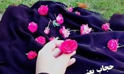 اهدای شاخه گل به همسران بانوان با حجاب/ برای حجاب هزینه نکردهایم