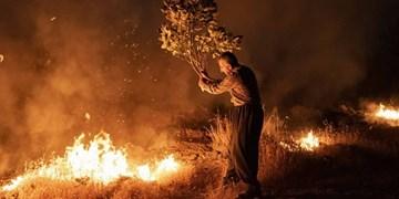 آتش سوزی جنگلهای پاوه